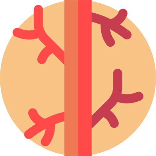 angiologia - santabarbara hospital gela